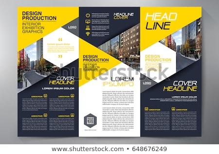 şirket iş broşür uçan broşür dizayn Stok fotoğraf © SArts