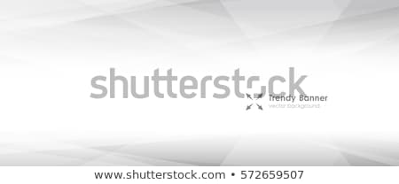 Absztrakt csíkos copy space fehér eps10 tapéta Stock fotó © ExpressVectors