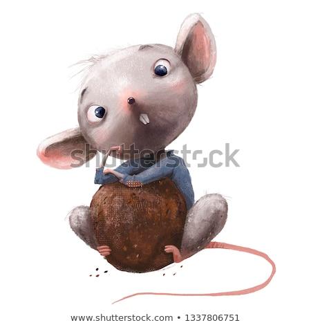 Animale mouse set ragazzo cinese cucina Foto d'archivio © toyotoyo
