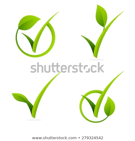 natural product lettering and green leaf isolated stock photo © robuart