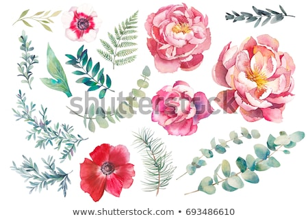 Set of Spring combinations of objects and elements. Stock photo © balabolka