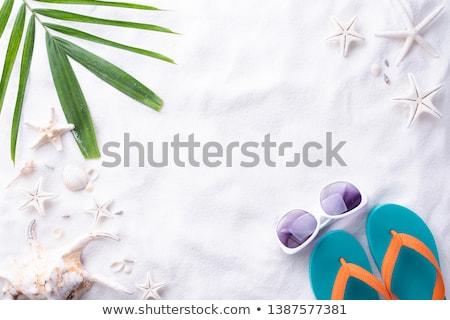 towel shells sunglasses and lotion stock photo © marylooo