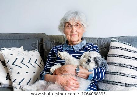 diariamente · vida · mulher · jovem · relaxante · sofá · casa - foto stock © ozaiachin