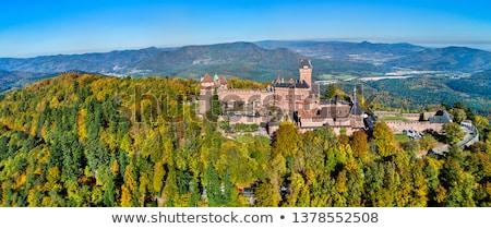 antica · castello · Francia · top · montagna · costruzione - foto d'archivio © njaj