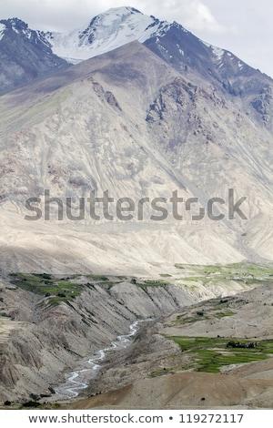 The River Shyoka In The Mountains Of Ladakh India Stok fotoğraf © haraldmuc