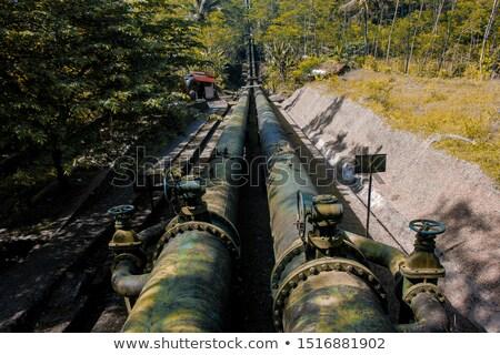 historic waterwower in fields Stock photo © meinzahn