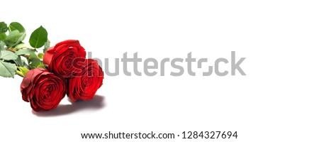 Rosa vermelha piso concreto casamento proposta abstrato Foto stock © compuinfoto