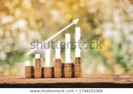 チーフ · お金 · 肖像 · 成功した · ビジネスマン · エレガントな - ストックフォト © pressmaster