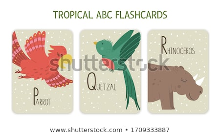 Flashcard letter P is for plant Stock photo © bluering