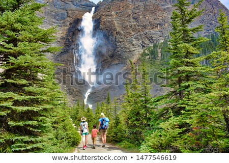 Su düşmek park ünlü orman manzara Stok fotoğraf © meinzahn
