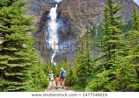 takakkaw water fall in yoho national park canada stock photo © meinzahn