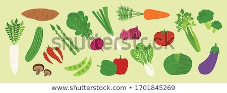 Broccoli And Red Radish Stock photo © SRNR