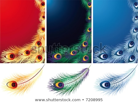 Fire peacock feather Stock photo © blackmoon979