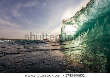 Tsunami ilha cena ilustração árvore nuvens Foto stock © bluering