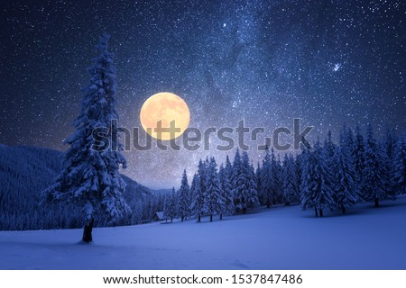 Winter view with a full moon in the mountains Stock photo © Kotenko