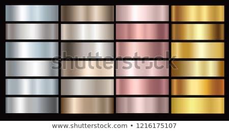 Elegante vetor coleção polido metálico texturas Foto stock © ExpressVectors