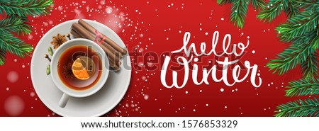 Hello Winter horizontal banner. Christmas tea with cinnamon and spices, on red background, vector il Stock photo © ikopylov