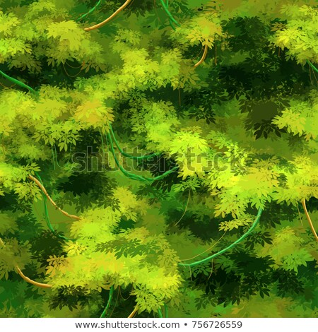 Cute cartoon tropical vines and bushes, seamless pattern Stock photo © evgeny89