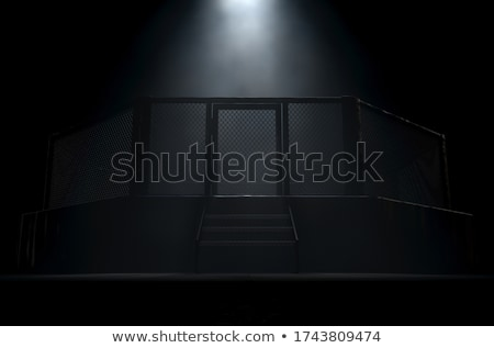 MMA Cage Door Spotlight Stock photo © albund
