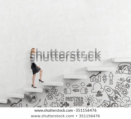 dollars with a ladder on white background stock photo © rufous