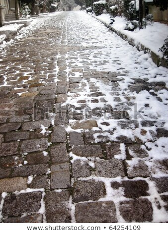 Close up shot of a cobblestone in winter time Stock photo © alexandkz