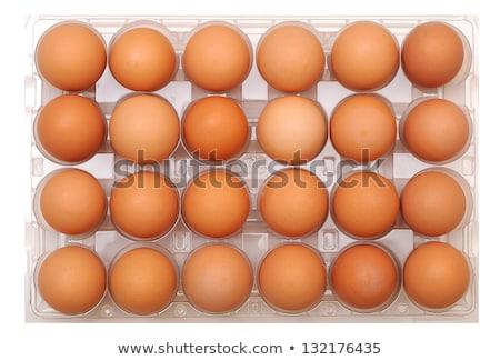 Vinte quatro branco ovos caixa fundo Foto stock © ozaiachin