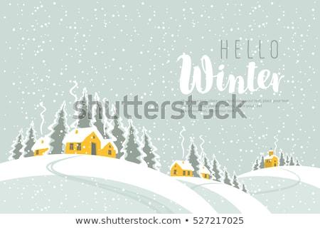 Church in Winter Landscape Stock photo © tepic
