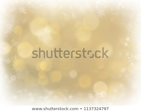 Kar taneleri vektör format soyut kar Stok fotoğraf © balasoiu