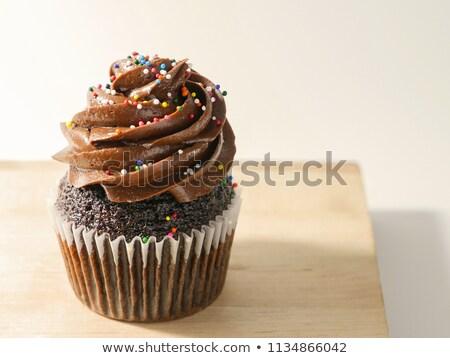 double chocolate cupcake stock photo © digifoodstock