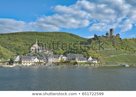 vineyard near Beilstein, Rheinland Pfalz, Germany Stock photo © phbcz