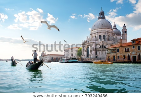Gulls over Grand Canal Stock photo © Givaga