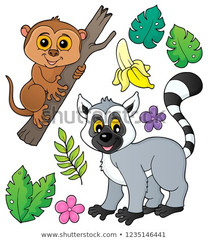 Tarsier and lemur theme set 1 Stock photo © clairev