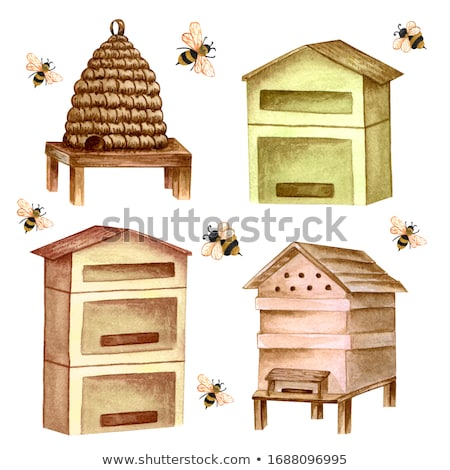 Beehives in the garden Stock photo © boggy
