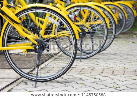 bicycles renting shop pattern rows parking stock photo © lunamarina