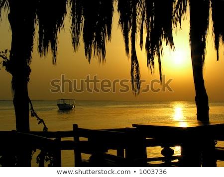 like caribian sunrise Stock photo © Paha_L