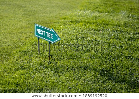 Golfing Sign Stock photo © vanessavr