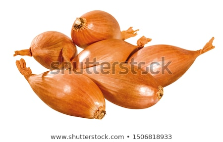 Small fresh brown onions Stock photo © juniart