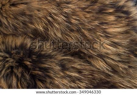 brown animal fur texture Stock photo © jarin13