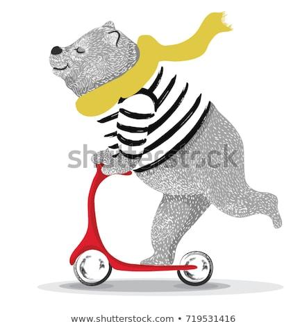 Vicces állat kutya tánc ló fény Stock fotó © bluering