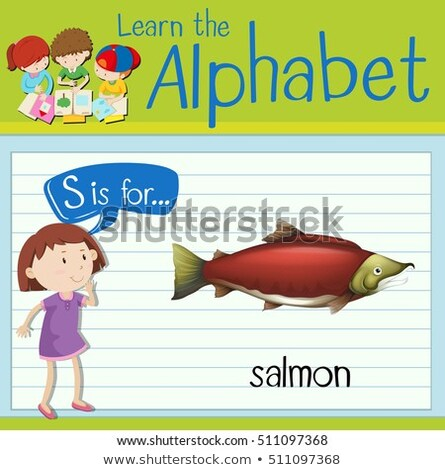 Flashcard letter S is for salmon Stock photo © bluering