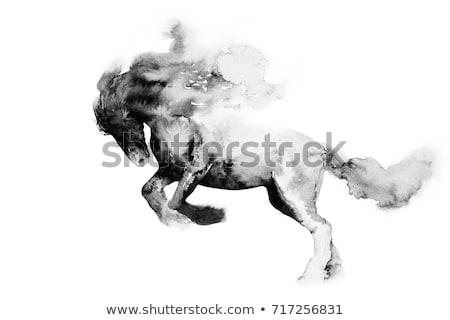 Kínai ló étel állatöv gyümölcsök izolált Stock fotó © Fisher