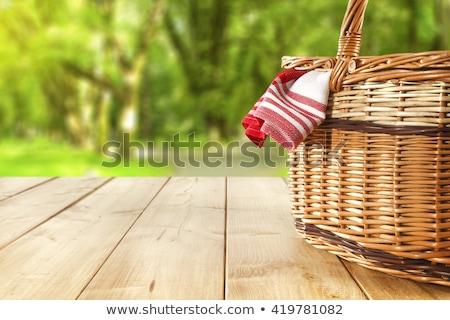 два · любителей · пикника · красивой · весны · саду - Сток-фото © fisher