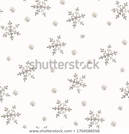 Hiver brun flocons de neige design neige Photo stock © jara3000
