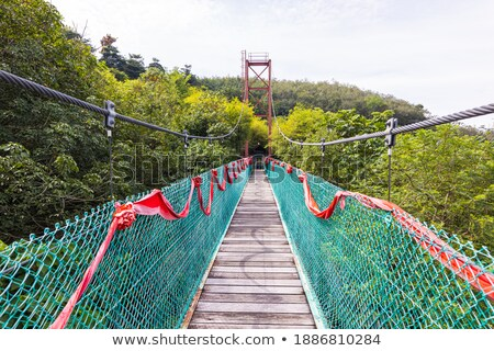 Suspension bridge over the forest in Kuala Lumpur ストックフォト © galitskaya