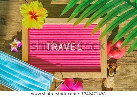 Viajar tropical assinar médico cara máscara Foto stock © Maridav
