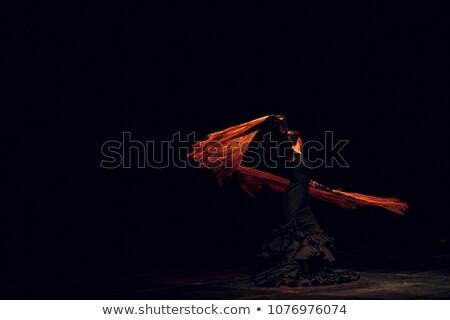 Flamenko dansçı kadın saç öğretmen portre Stok fotoğraf © photography33
