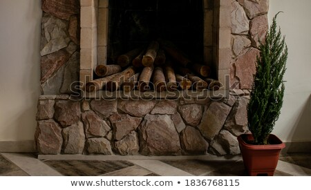 Logs for a small fire Stock photo © vavlt