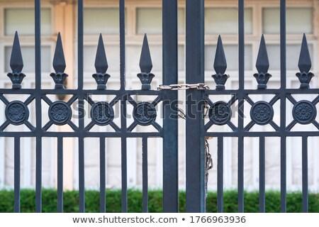 Zincir kapı paslı çelik etrafında Metal Stok fotoğraf © rhamm