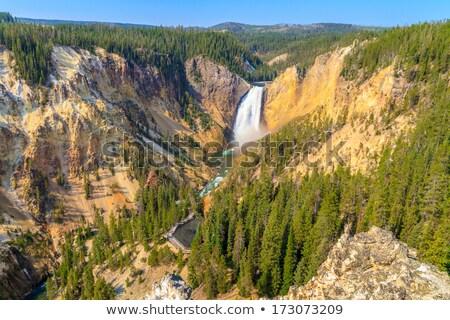 parque · géiser · natureza · terra · montanhas · salpico - foto stock © capturelight