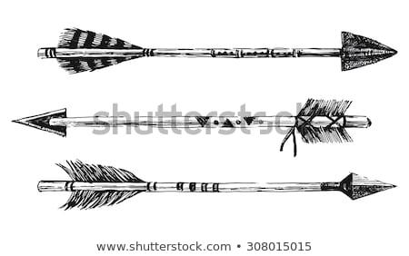 Arrow For Bow Vector Illustration Stock photo © mart
